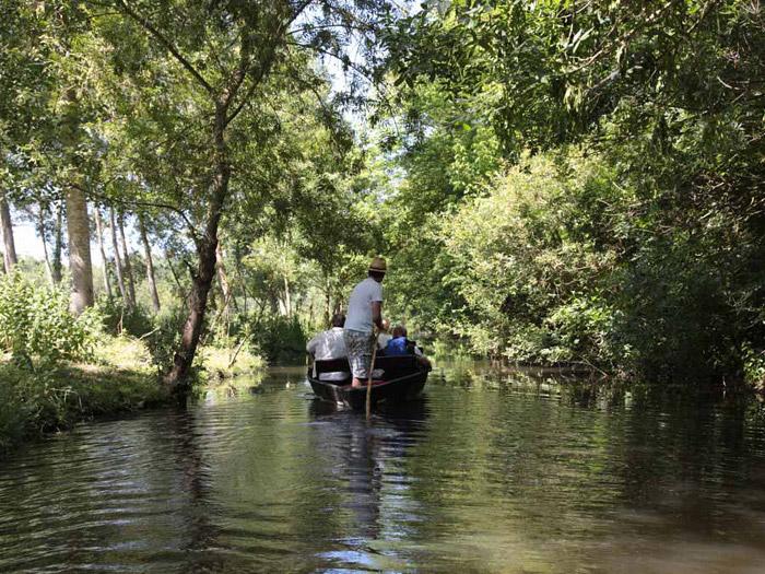 Visitez le sud Vendée et le marais poitevin toute l'année